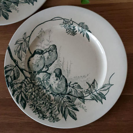 ヴィエイヤー ボルドーのディナープレート 小鳥たちの語らい#2