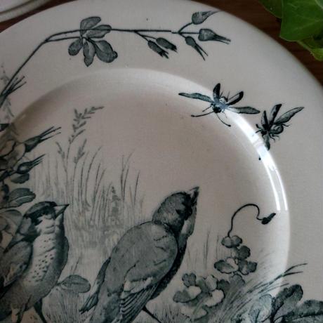 ヴィエイヤー ボルドーのデザートプレート 小鳥と虫たち#2