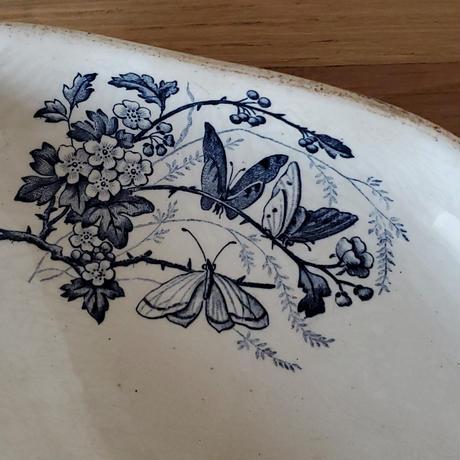 バドンヴィレー蝶のラヴィエ#1