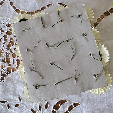 マーガレットの布花シート