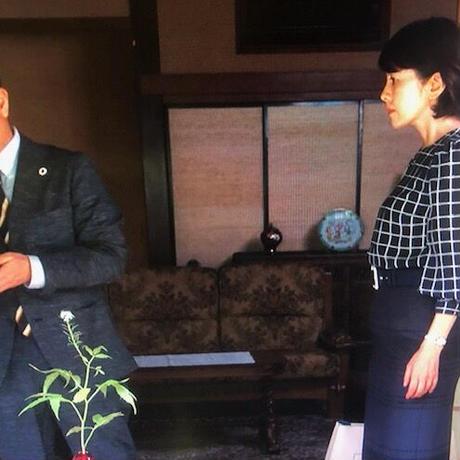 鈴木保奈美さん&沢口靖子さんご着用 ストール付きブラウス&ベルト付きスカートのセットアップスーツ