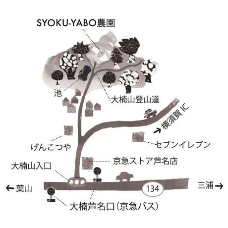 2021/5/15(土)【Acoustic Lounge】at SYOKU-YABO農園(神奈川/横須賀)