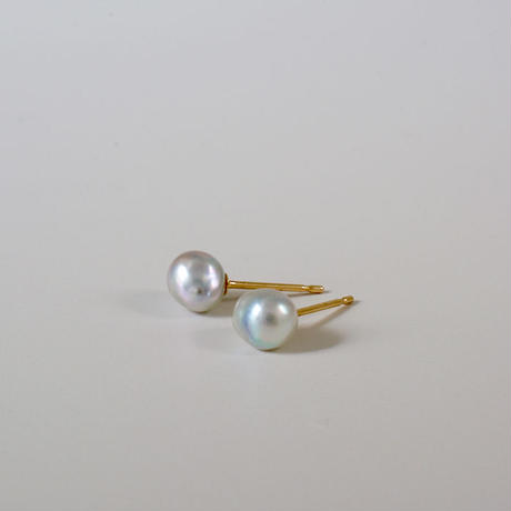 Baby akoya  pearl earrings