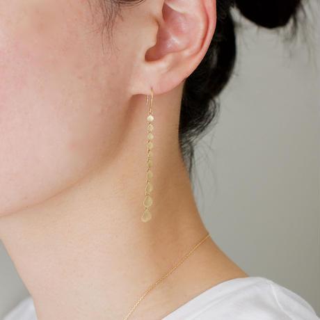 Paisley gradation earrings