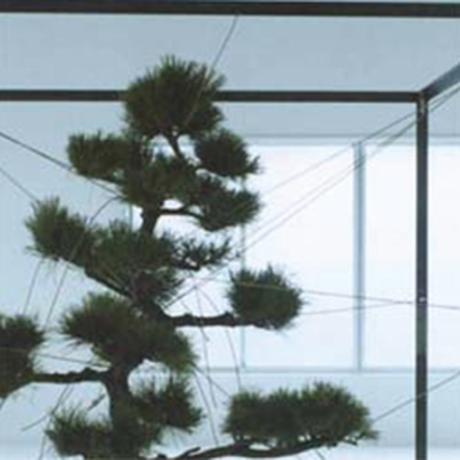 【CD】ミニアルバム『鏡花水月』