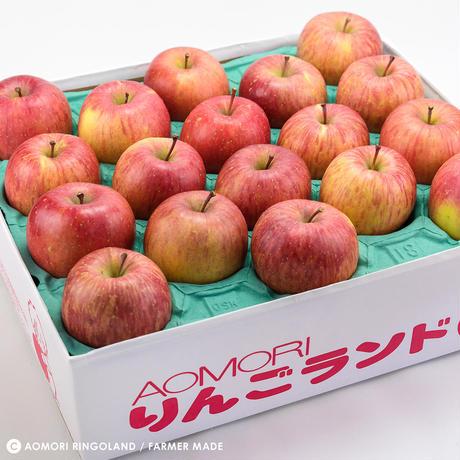 青森県産 サンふじ 10kg家庭(36~46個)