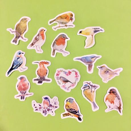 鳥 シール 15枚セット BIRD STICKERS