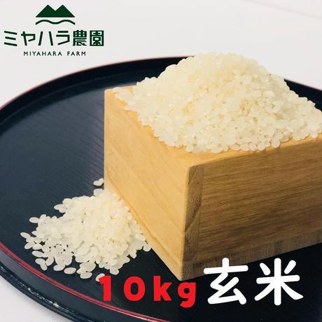 『新米』ミヤハラ米10kg(玄米)【10年連続食味特A判定!「品種:さがびより」令和2年秋☆収穫米100%保証】