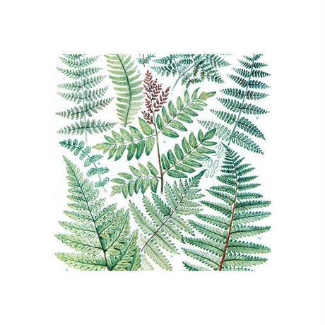 ハンカチーフ/Leaves/SS:45×45cm