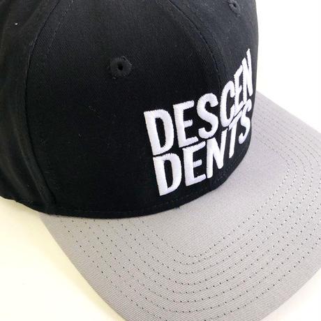 DESCENDENTS /  Snapback Hat Black/Silver ディセンデンツ キャップ
