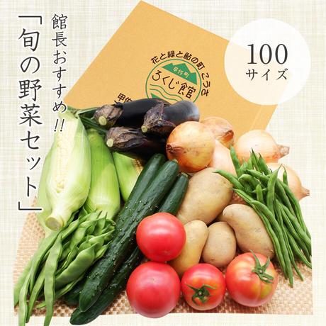館長おすすめ!旬の野菜セット 100サイズ(野菜7品〜8品)