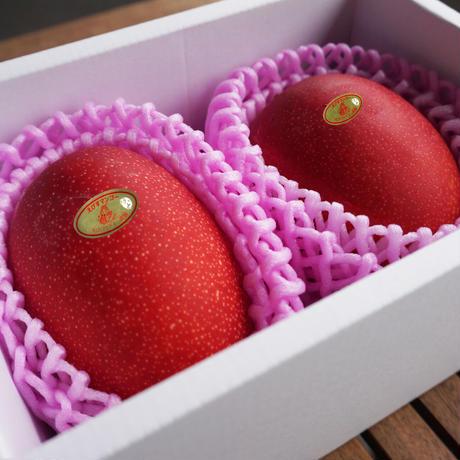 恵比寿マンゴー Lサイズ2玉(予約販売)