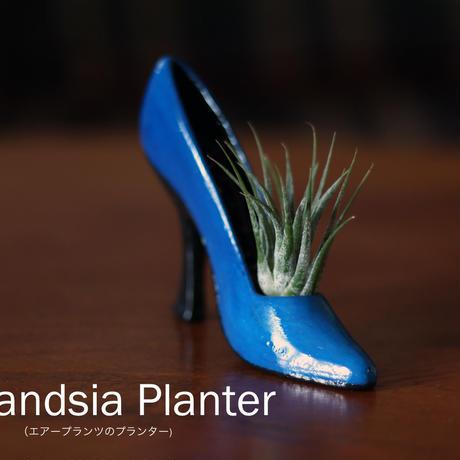 Tillandsia Planter(エアープランツのプランター)2