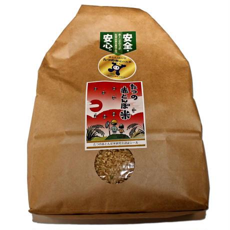 たつの赤とんぼ米 コシヒカリ玄米2kgひょうご推奨ブランド