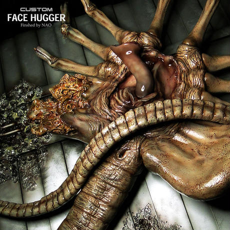 CUSTOM FACE HUGGER 完成品