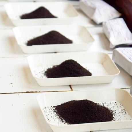 紅茶 ディンブラ 100g 【ワタゴダ茶園 】 2021年  新茶  Dimbula