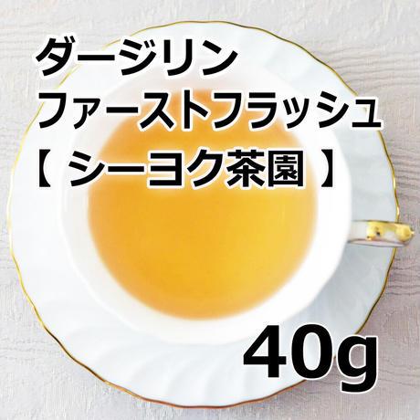 ダージリン ファーストフラッシュ 40g 【シーヨク茶園】2021年産
