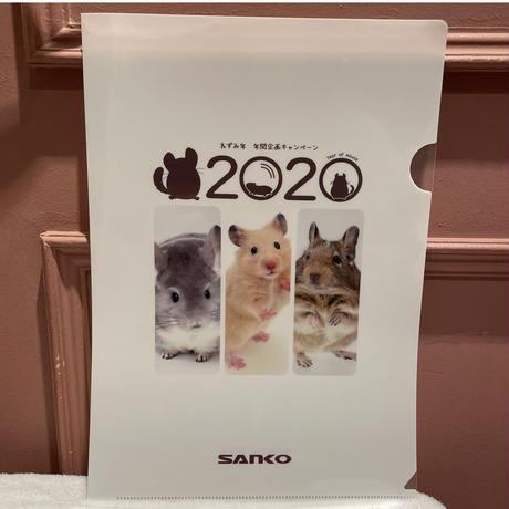 《先着100名様2020クリアファイルプレゼント》サンコー  糸島のブロッコリーの実