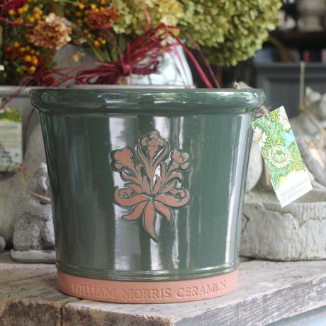 William Morris グリーン Mサイズ