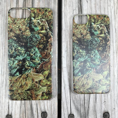 "visualreports ""REAL FOREST"" iPhone case (Clear/iPhone6/7/8/Plus)"