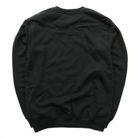 Carhartt Pullover sweat(Black)