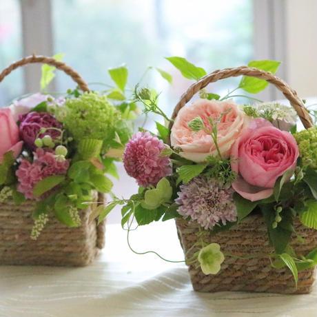 お花の定期便 お試し便