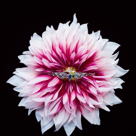 a vivid flower【BLACK color】