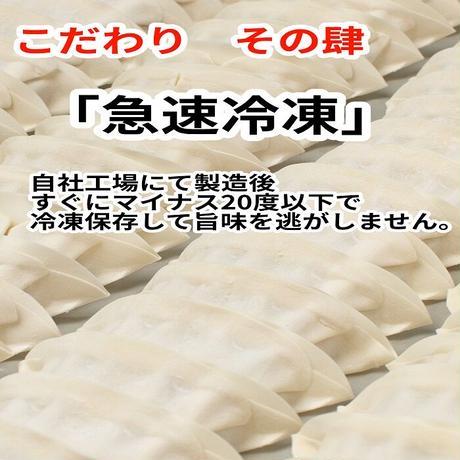 冷凍餃子(ニラにんにく入り18個入り)