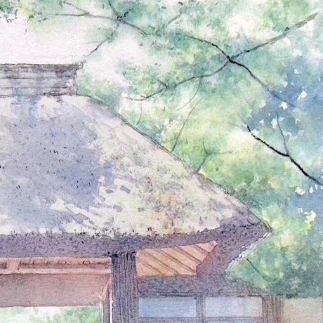 緑風(京都・法然院)