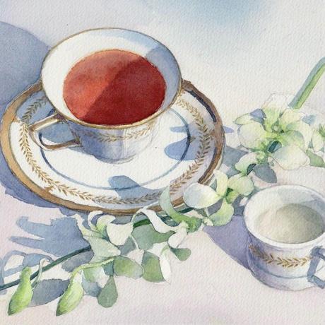 紅茶とデンドロビウム