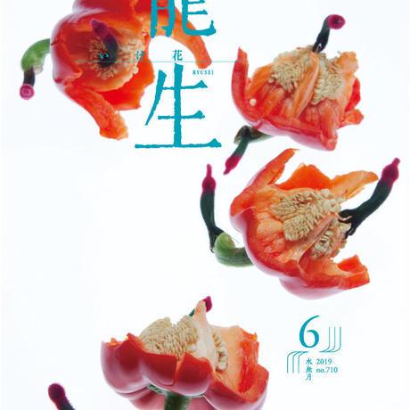 月刊『いけ花龍生』2019年6月号【国内送料無料】