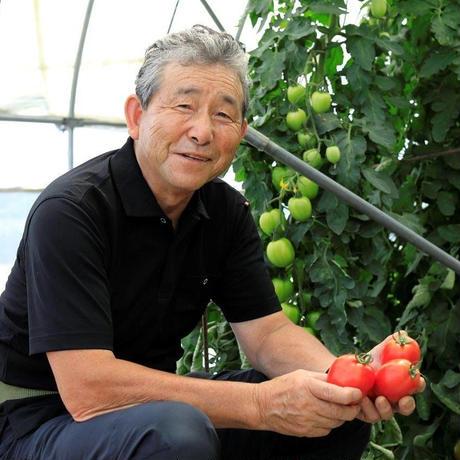 【お試し!】トマトケチャップ【2個入】