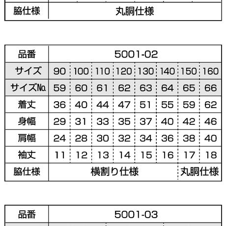 5deb5f17b080e04abfe5e63c