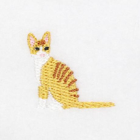 65_13日本ネコ