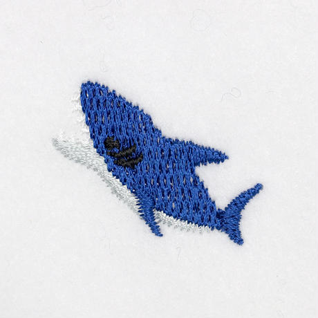 2_31サメ