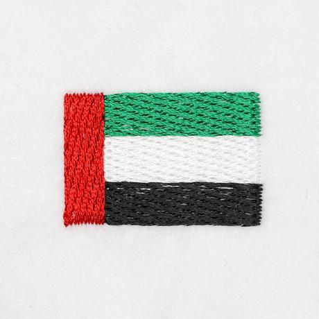 18_11アラブ連邦