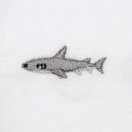 21_22サメ