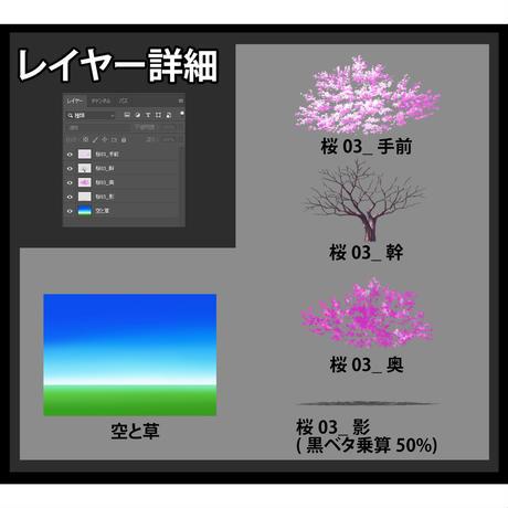 素材_桜03