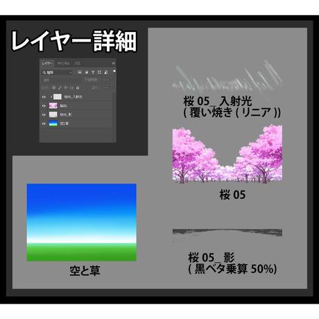 素材_桜05