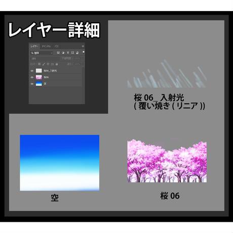 素材_桜06