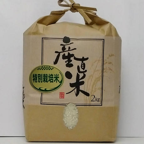 【精米】特別栽培米こしひかり 2kg 令和2年産(やまろく商店)