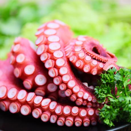 真蛸ボイル 500g