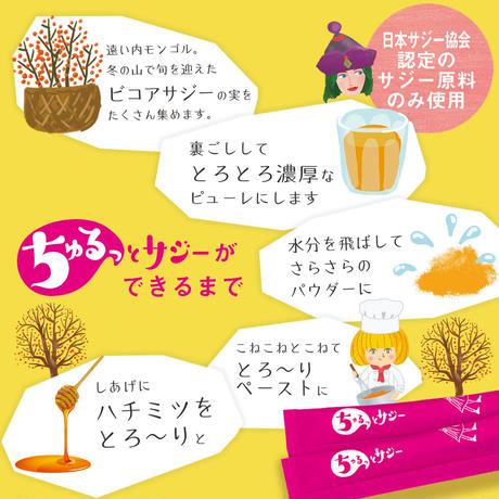 【単品】鉄分補給にちゅるっとサジー【4週間分】スペシャル缶入りパッケージ