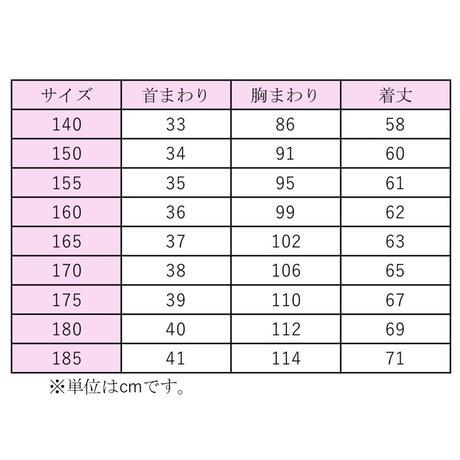 【半袖】HATOSAKURA 女子学生用ブラウス