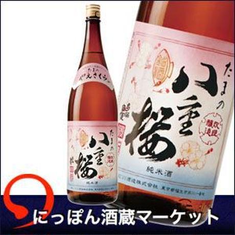 たまの八重桜|720ml