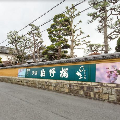 大阪エヴェッサ × 大吟醸 玄櫻 片野桜  (3本セット)