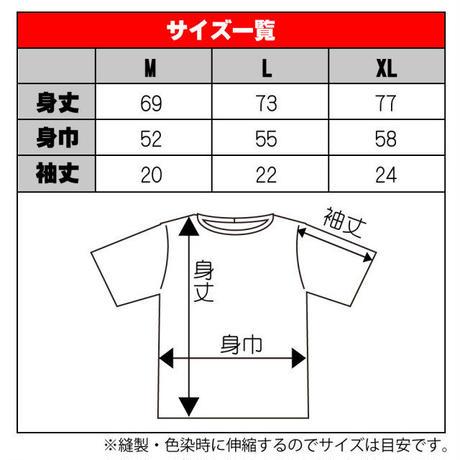 北陸とらいあんぐる 加賀ひまりTシャツ