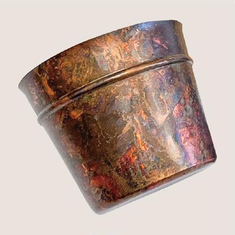桜ヶ池クエスト募金 SAKURA (苗木+bucket)
