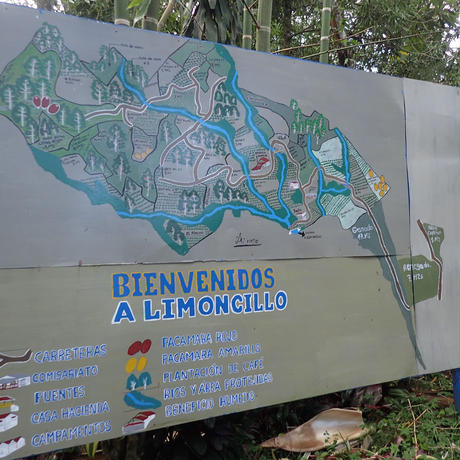 【ニカラグア】リモンシージョ農園 200g