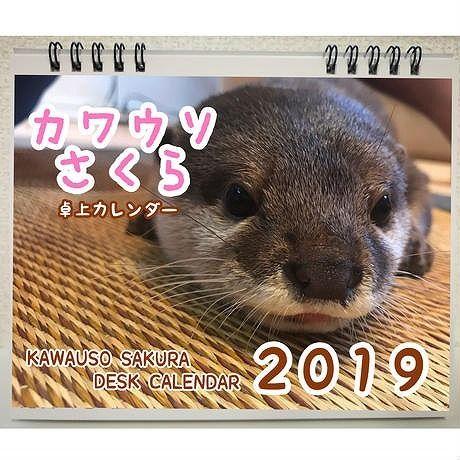 【送料無料】2019年  カワウソさくら 卓上カレンダー